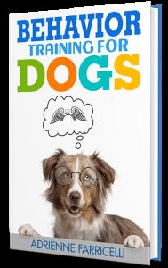 brain training for dogs behavior training