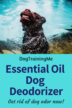 essential oil dog deodorizers