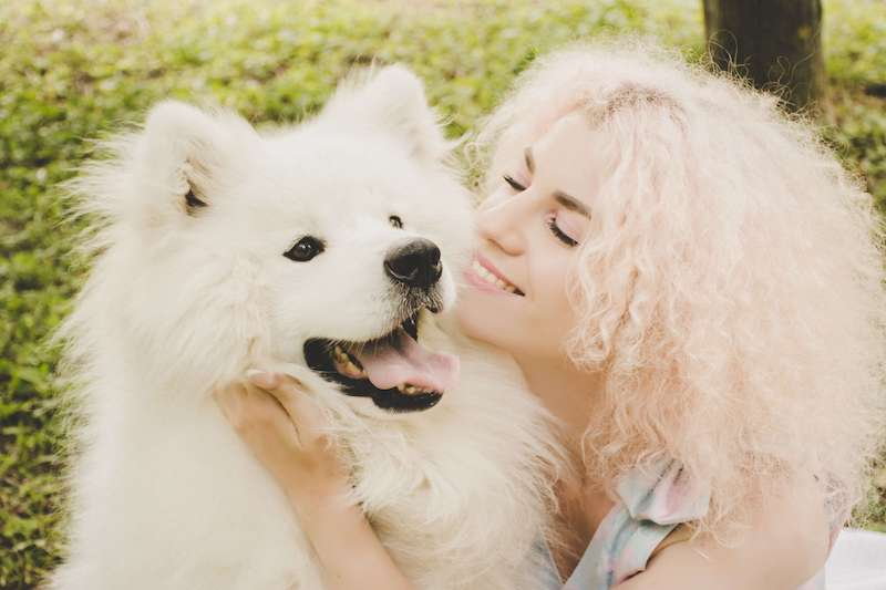 affection to keep dog happy
