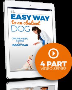 Easy Way Dog Video Series