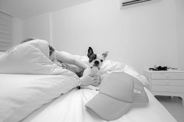 Dog is sleeping with you