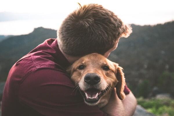 Dog smelling me